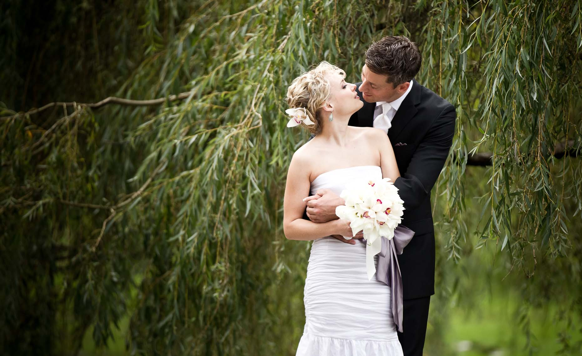 Bride and groom kiss under a weeping willow in Vancouver BC