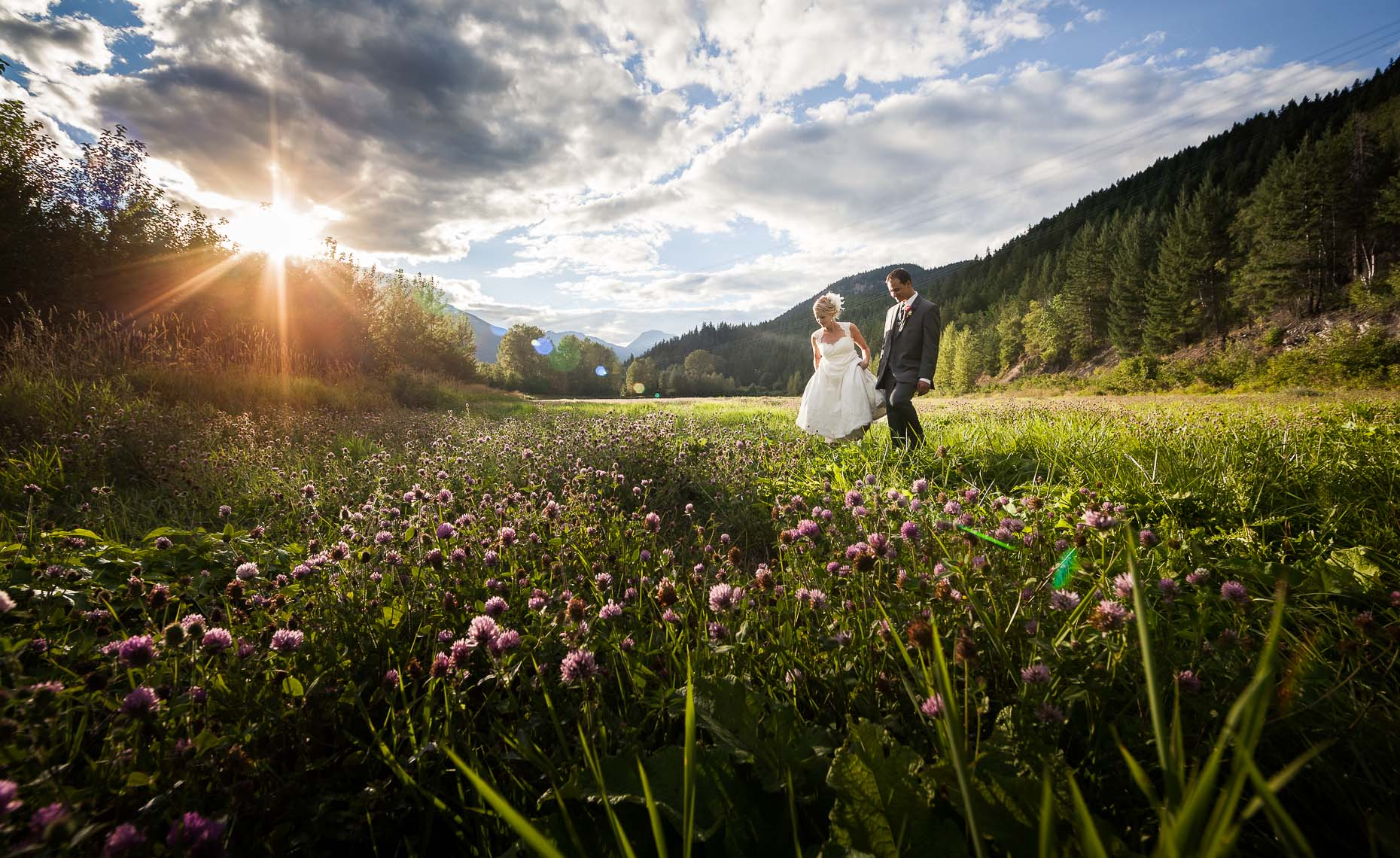 whistler wedding photography of romantic field at sunset
