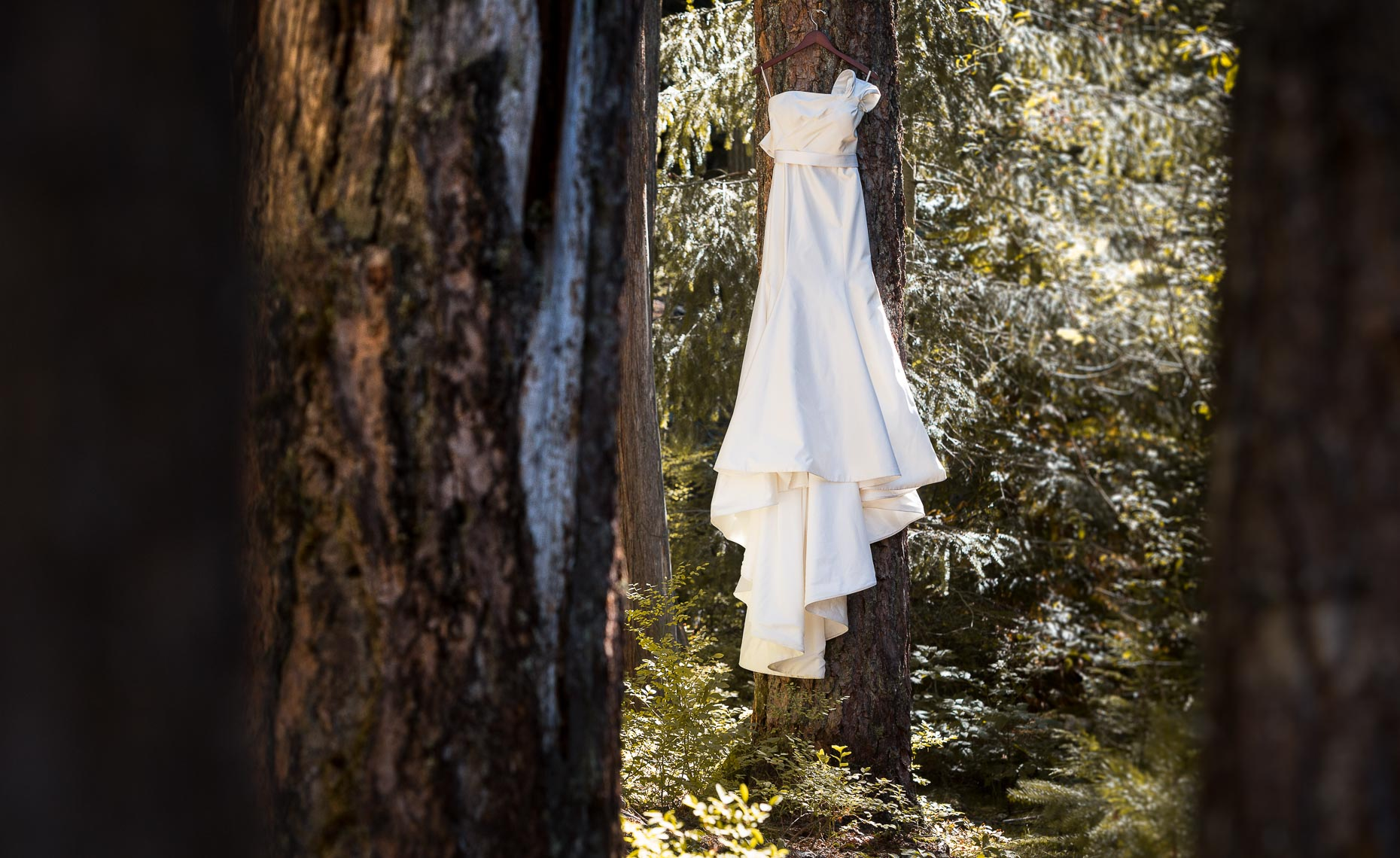 forest wedding dress in whistler