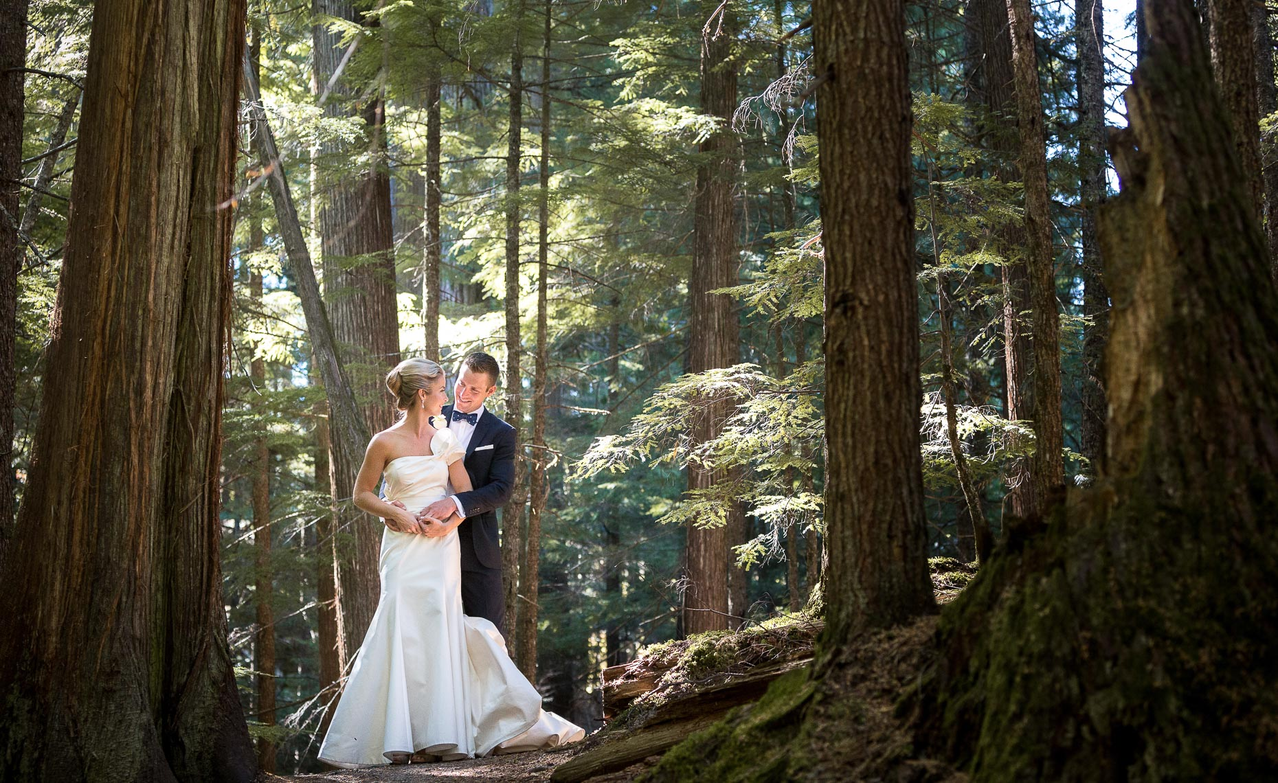 Bride and groom wedding portrait in the forest of Whistler