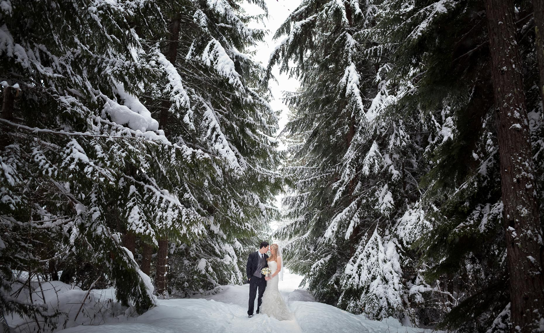 snowy winter wedding couple portrait