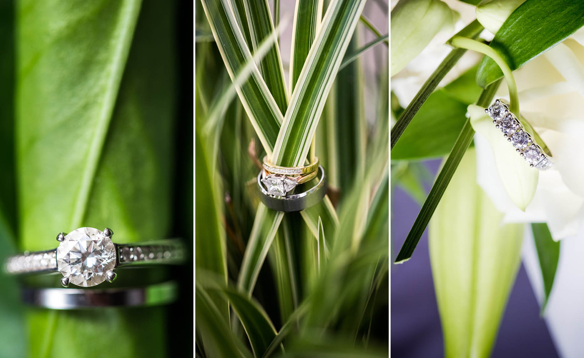 Wedding and and gagement ring detail photography from whistler